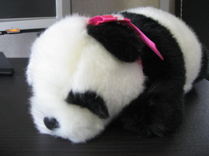 上野動物園のぬいぐるみ「パンダ」