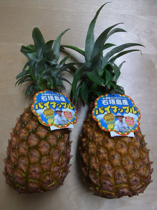沖縄からパイナップル