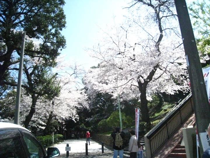 元町公園入り口から撮影