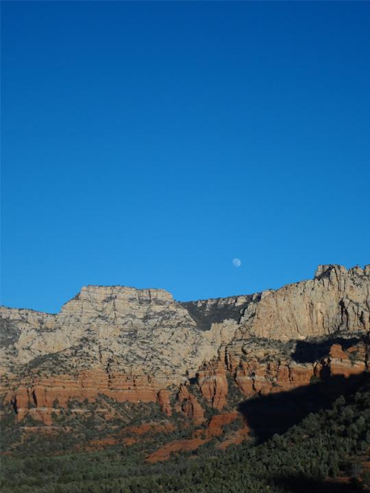 お昼3時ぐらいの撮影、月が美しい。
