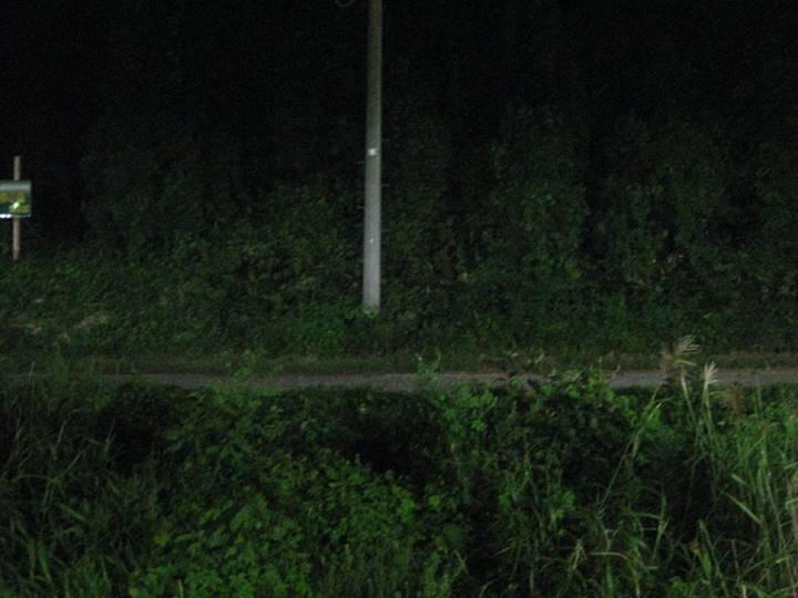 カメラの感度を最高に上げて撮った野宿現場の写真。真っ暗だった。