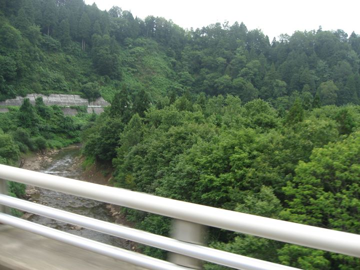 緑に囲まれた高速道路!!