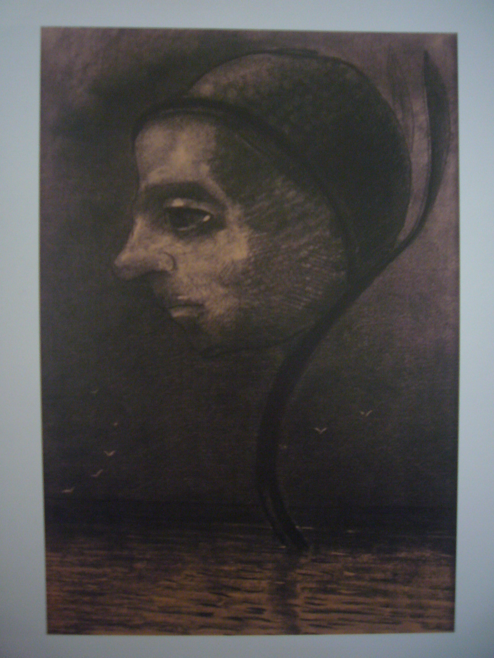 沼の花 1880年頃 木炭、紙