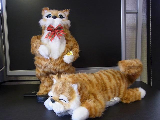 踊る★猫田課長と猫田係長