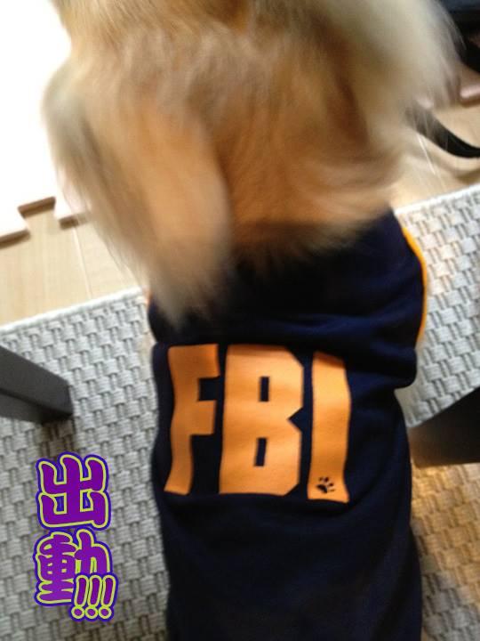 FBIパトロール中 (Fujimura Bureau of Investigation )