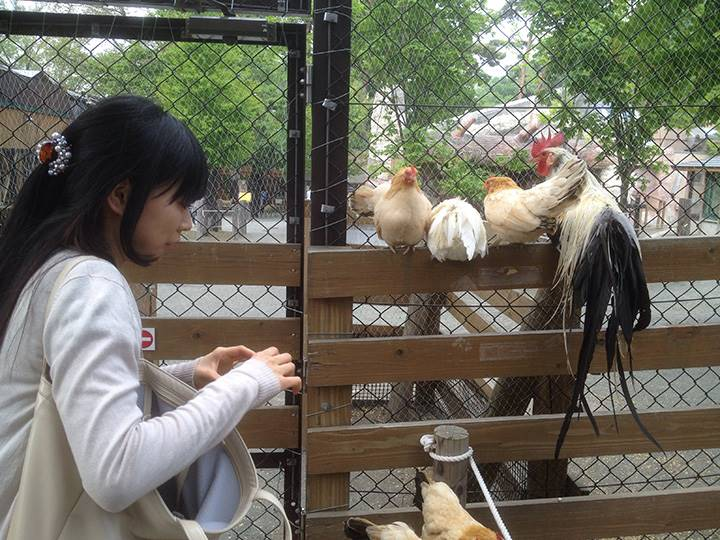 鳥と会話中