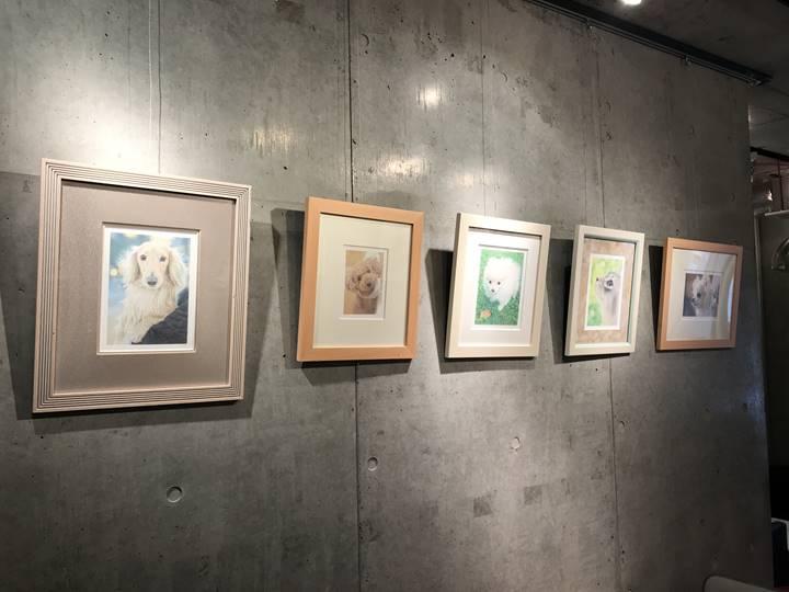 ギャラリー内には、作品も展示中
