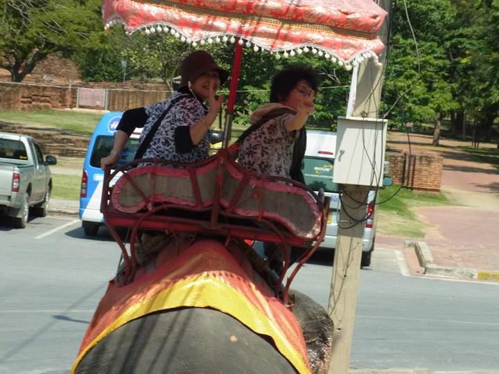 タイでは象にも乗っちゃいました!