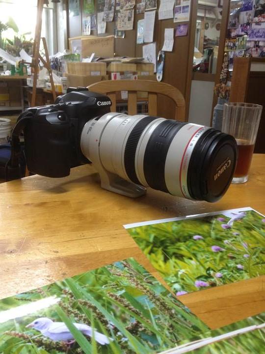 先生愛用のカメラ