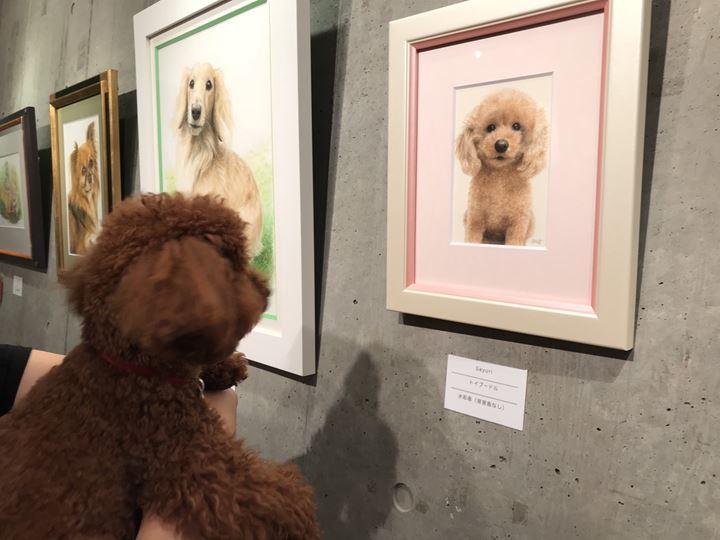 ペット肖像画を見るワンちゃん
