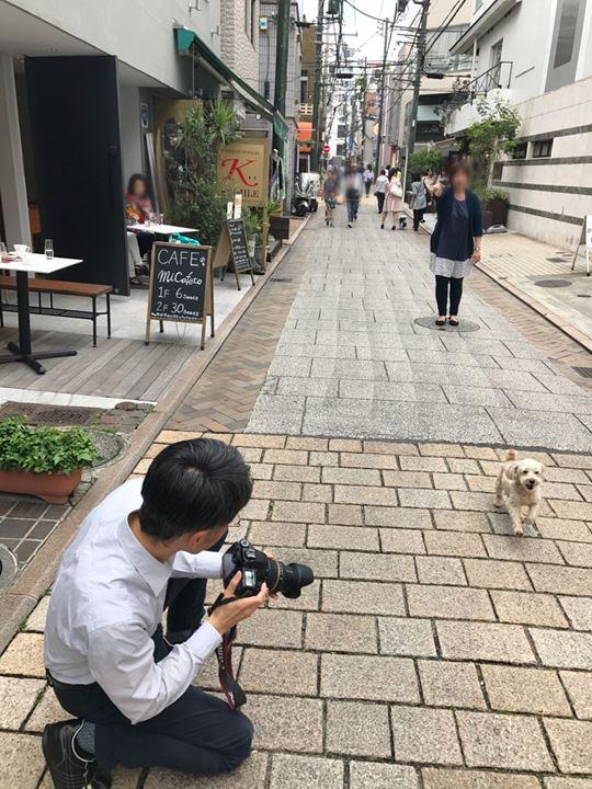 写真素材の撮影