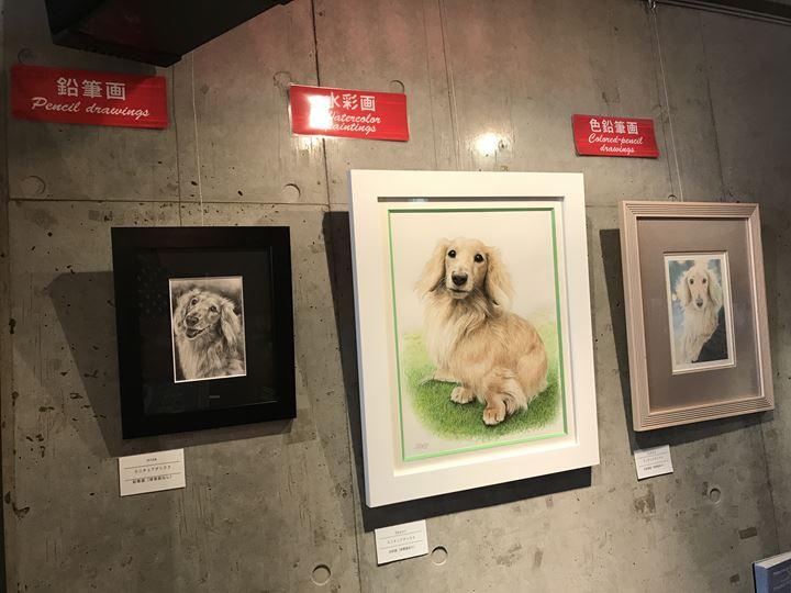 チャーミングセール開催中の「ペット肖像画」展