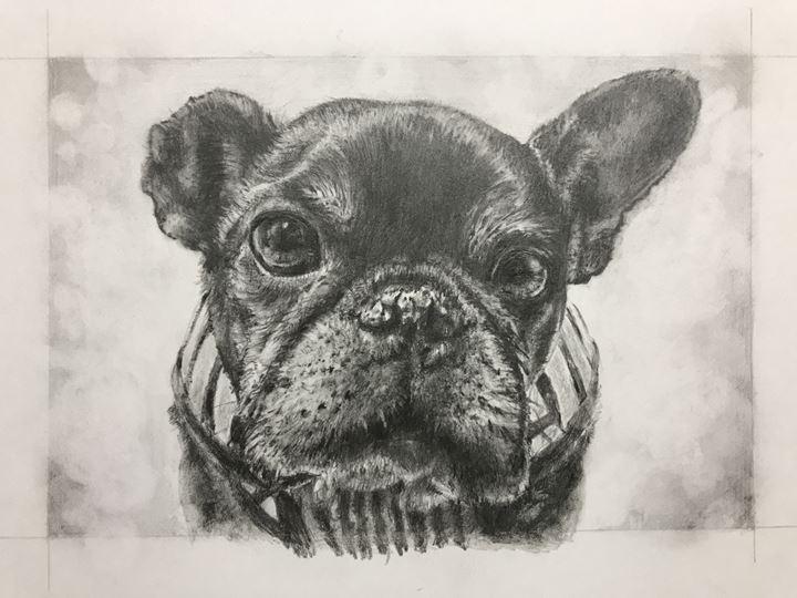 フジムラコンテンポラリーアートのペット肖像画作品