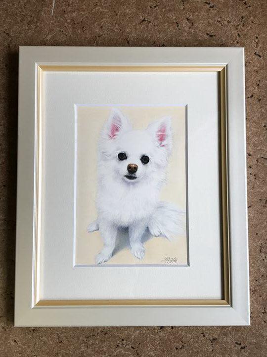 ペット肖像画写真
