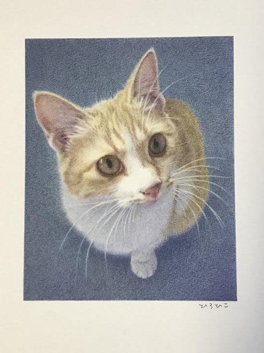 ペット肖像画 色鉛筆作品