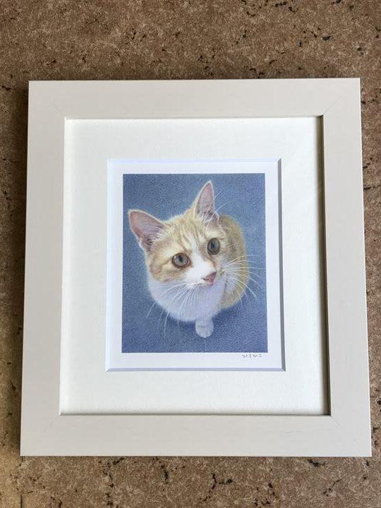 ペット肖像画:色鉛筆作品