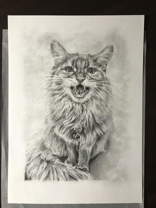 ペット肖像画:完成写真