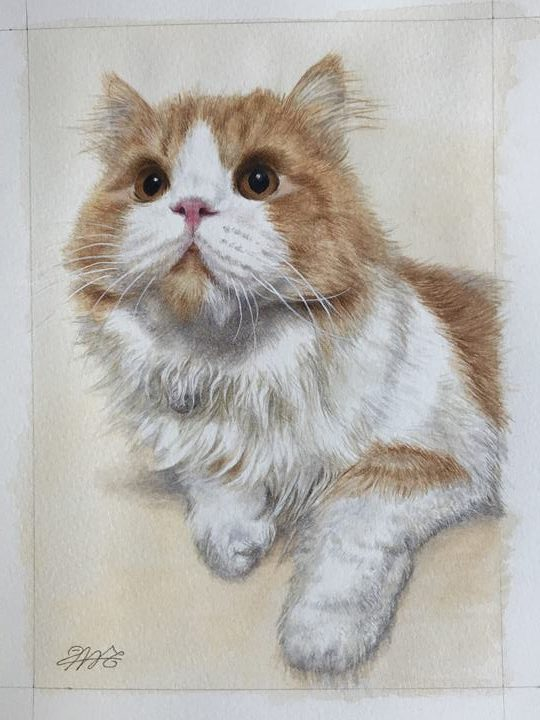 ペット肖像画:水彩画