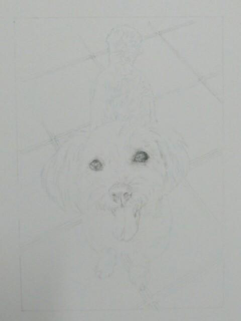 ペット肖像画:水彩画のイメージ写真