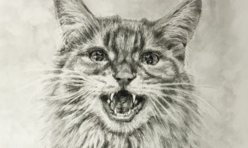 ペット肖像画:鉛筆画