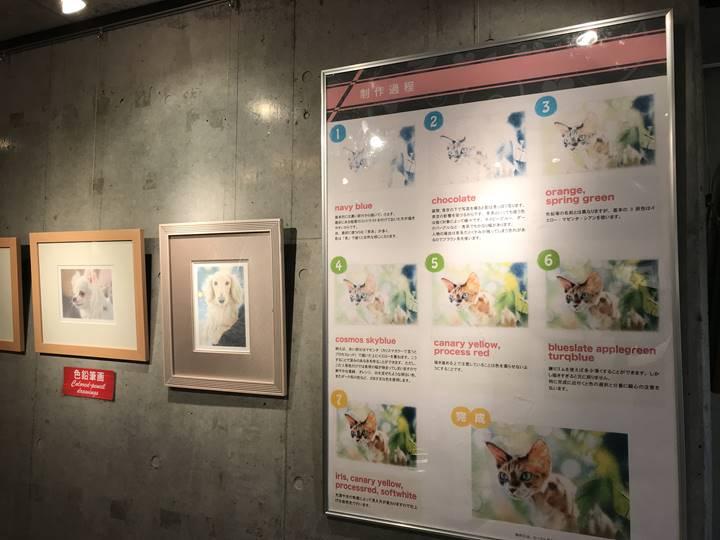 ペット肖像画 受注キャンペーンのギャラリーの様子