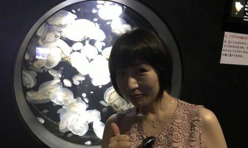 鶴岡市立加茂水族館(クラゲ水族館)で開催される、つだなおこ画伯による「鉛筆海月」展のPOP