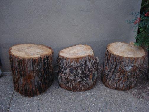 スティーブホールマークが作品に使用する古木
