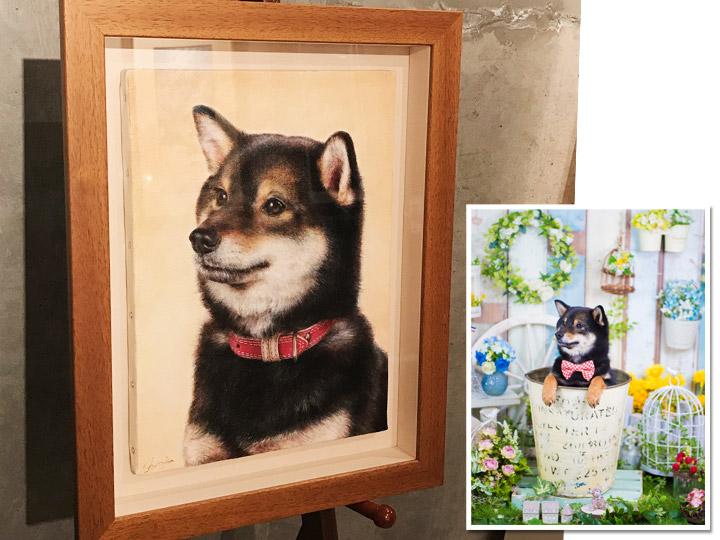 ペットアート:油彩画のイメージ写真