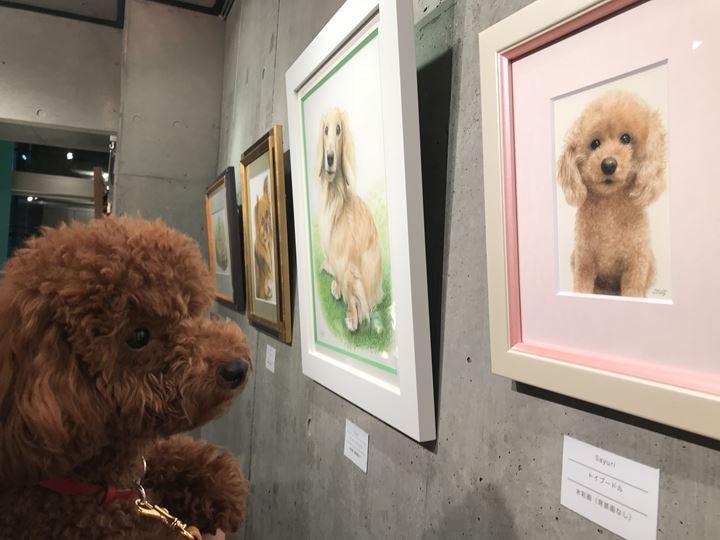 ペット肖像画を観覧する飼い主様とペットご本人の写真